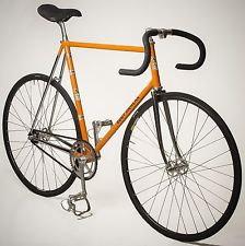 orange mercx