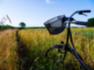 bike in field